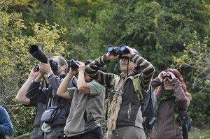 rutas ornitológicas Valle del Jerte