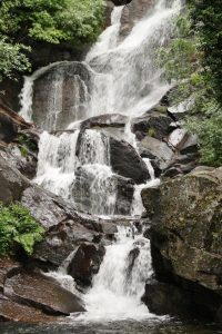Naturaleza Valle del Jerte